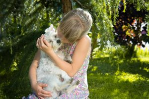 3 Ways Humans Are Spreading Canine Distemper